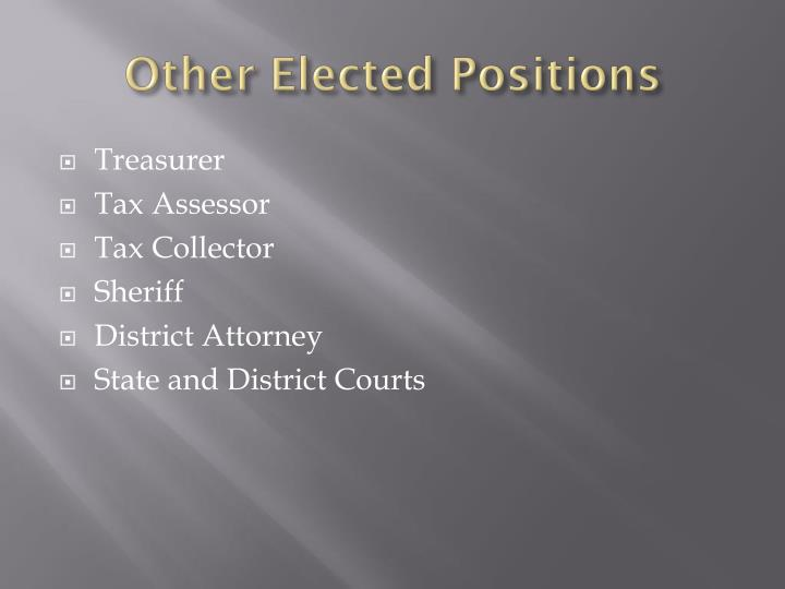 Other Elected Positions