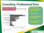 consulting professional firms