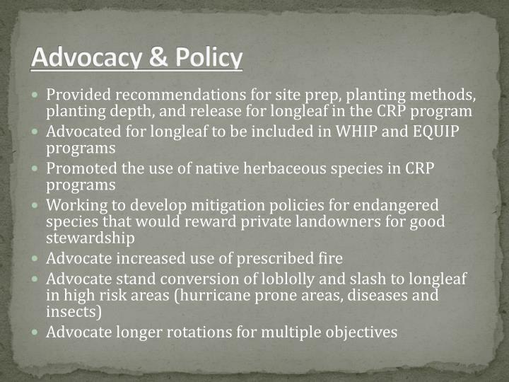 Advocacy & Policy