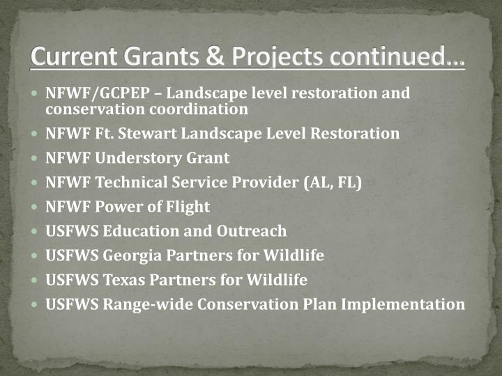 Current Grants & Projects continued…