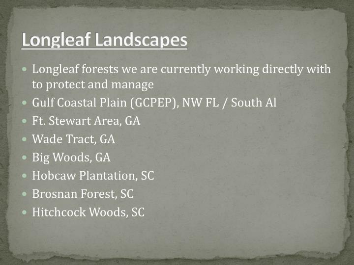 Longleaf Landscapes