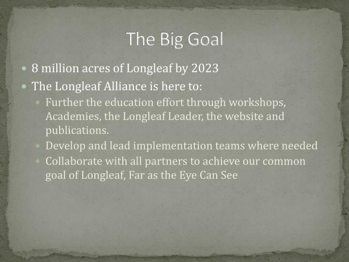 The Big Goal
