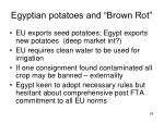 egyptian potatoes and brown rot