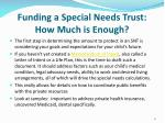 funding a special needs trust how much is enough2