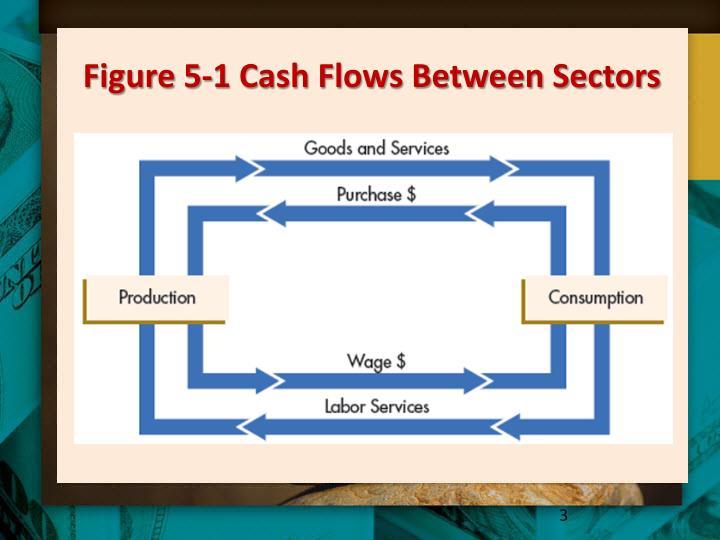 Figure 5 1 cash flows between sectors