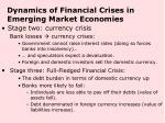 dynamics of financial crises in emerging market economies1