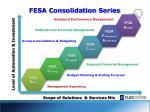 fesa consolidation series1