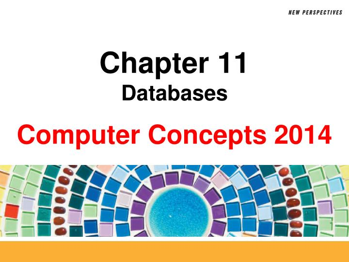 chapter 11 databases n.