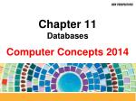 chapter 11 databases