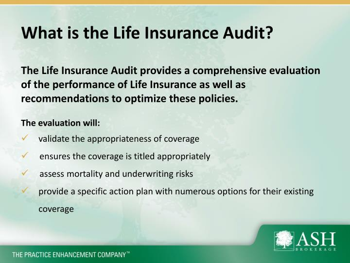 What is the life insurance audit