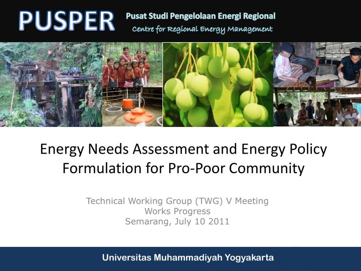 energy needs assessment and energy policy formulation for pro poor community n.