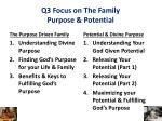 q3 focus on the family purpose potential
