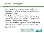special damages