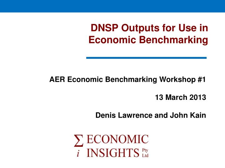 dnsp outputs for use in economic benchmarking n.