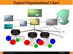 typical organizational chart