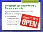 profit from self employment entrepreneurship