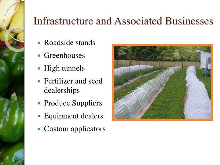 Infrastructure and Associated Businesses