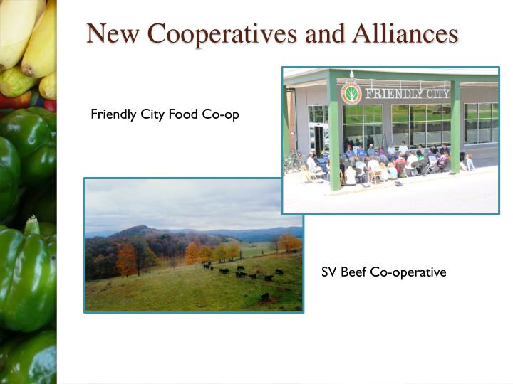 New Cooperatives and Alliances