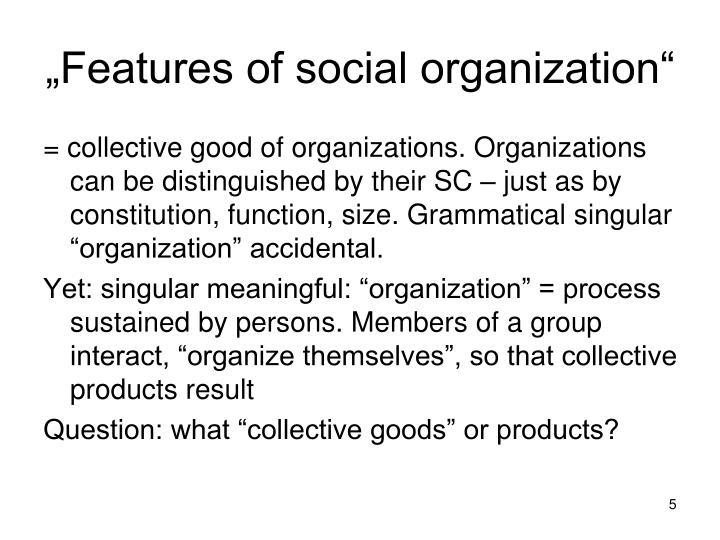"""""""Features of social organization"""""""