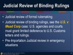 judicial review of binding rulings