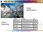 why do we care about graphs trees