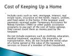 cost of keeping up a home