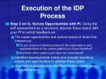 execution of the idp process1