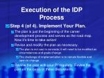 execution of the idp process3