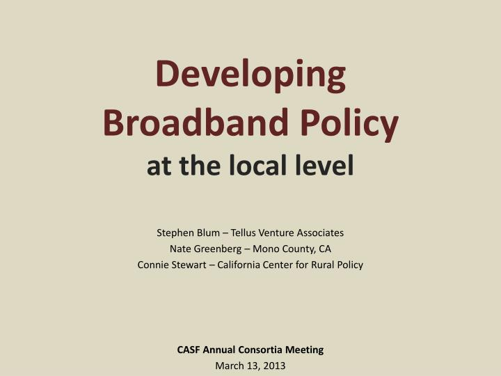 developing broadband policy at the local level n.