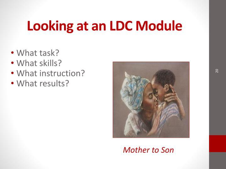 Looking at an LDC Module