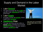 supply and demand in the labor market1
