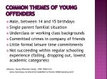 common themes of young offenders