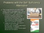 problems with the self sufficiency alternative