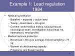 example 1 lead regulation 1984