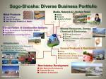 sogo shosha diverse business portfolio