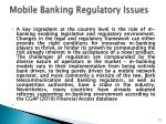 mobile banking regulatory issues