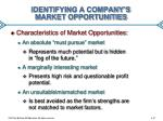 identifying a company s market opportunities