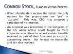 common stock flaws in voting process