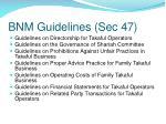 bnm guidelines sec 47
