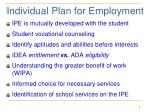 individual plan for employment