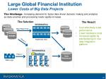 large global financial institution lower costs of big data projects