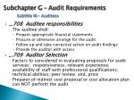 subchapter g audit requirements subtitle iii auditees