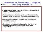themes from the focus groups things we should pay attention to1