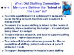 what did staffing committee members believe the intent of the law is