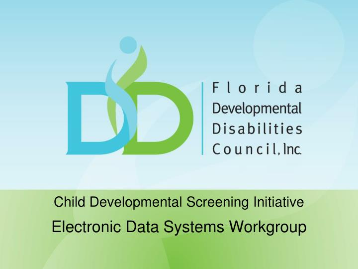child developmental screening initiative electronic data systems workgroup n.