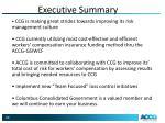 executive summary