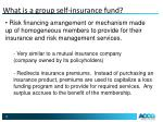 what is a group self insurance fund
