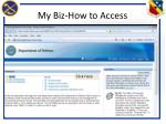 my biz how to access3