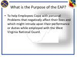 what is the purpose of the eap