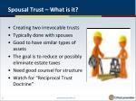spousal trust what is it